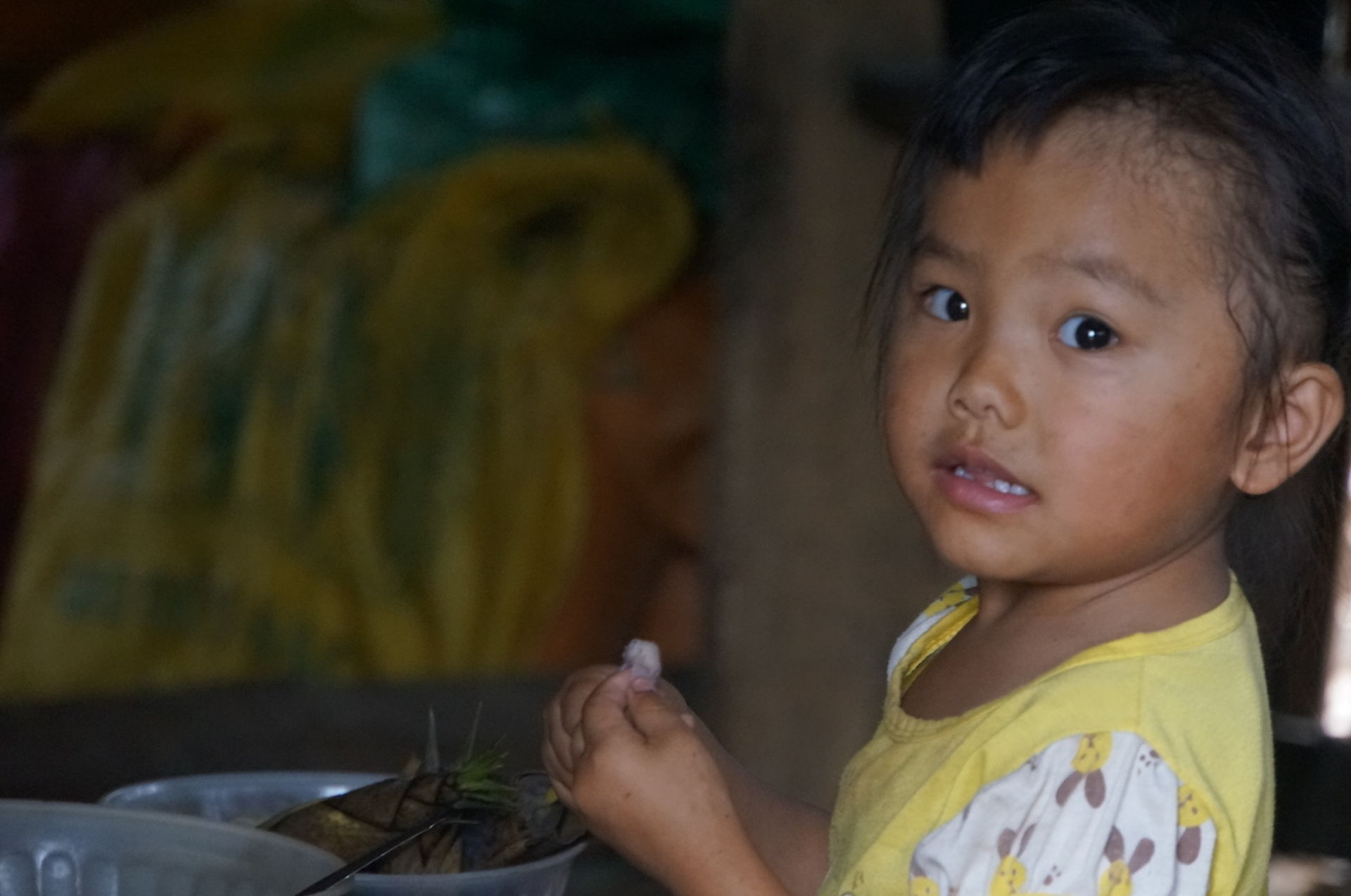 Help us make more of this beautiful little girls life (Son La Province, Northern Vietnam)!